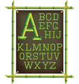 bamboo frame with canvas and stylized alphabet vector image vector image