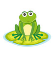 frog on a lilypad vector image
