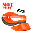 meat - salmon fresh meat icon vector image vector image