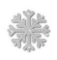 silver snowflake christmas decoration covered vector image vector image