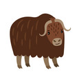 yak cartoon icon vector image