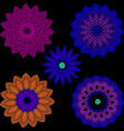 abstract colorful halftone radial flowers set vector image