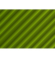 background creased layout green vector image vector image