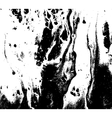 Black and white marbled texture Grunge vector image vector image