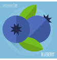Blueberry icon vector image vector image