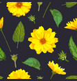 seamless pattern with chrysanthemums flowers on vector image vector image