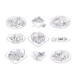 set of different salads served on plates and in vector image vector image