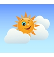 Winking sun vector image vector image