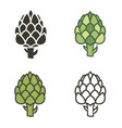 artichoke vegetable set vector image vector image