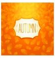 Autumn badge design vector image vector image