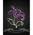 Chalk flower on blackboard vector image vector image
