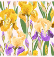 floral pattern with iris flowers vector image vector image