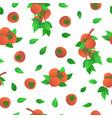 ripe orange persimmons seamless pattern vector image vector image