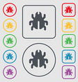 Software Bug Virus Disinfection beetle icon sign vector image