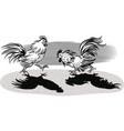 two cocks facing each other in a fight vector image