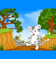 white tiger and bird with mountain cliff scene vector image vector image