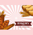 bread baguette and toast bakery design vector image vector image