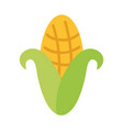 cob corn isolated icon vector image vector image