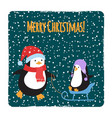 cute cartoon family penguins christmas cards vector image vector image