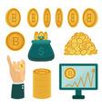 flat bitcoin symbols golden coins set vector image vector image