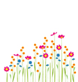 flowers in garden on a white background vector image vector image