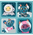 Four images of kitten astronauts cute collection vector image
