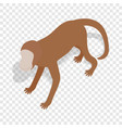 monkey isometric icon vector image vector image