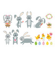 set of easter bunnies chicks and eggs isolated vector image