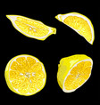 set with parts of lemon fruit in different forms vector image