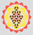 Flower of life seed vector image vector image