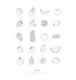 pen line fruits icons vector image vector image