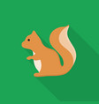 squirrel icon set of great flat icons design vector image vector image