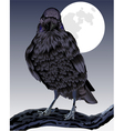 The Formidable Raven vector image vector image