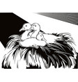 young geese in a nest vector image
