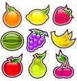 glossy fruits vector image