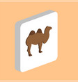 african bactrian camel computer symbol for your vector image vector image