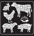 animal farm set cut beef pork lamb chicken vector image