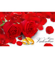 red roses with golden ring on white background vector image vector image
