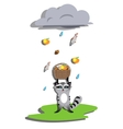 Rain for racoon vector image