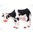 cute cow with black spots farm animal isolated on vector image