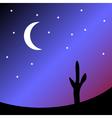 Desert at night vector image vector image