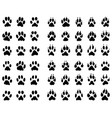 dogs and cats paws vector image vector image