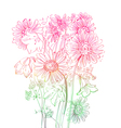 flowers bouquet vector image vector image