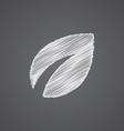 plant sketch logo doodle icon vector image vector image