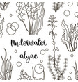 set underwater green sea seaweeds pattern vector image