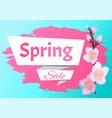spring sale advertisement label branch of sakura vector image vector image
