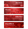 viruses bacterial infections and blood diseases vector image vector image