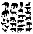 Black silhouettes of elephants cows bulls vector image vector image