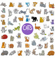 cartoon cat characters big set vector image vector image