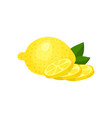 colorful of whole fresh lemon three vector image